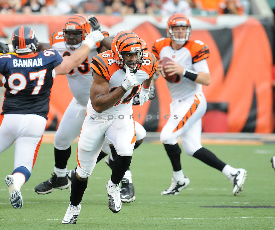 JERMAINE CRESHAM, of the Cincinnati Bengals in action during the Bengals game against the Denver Broncos    at Paul Brown Stadium in Cincinnati, OH.  on August 20, 2010.  The Bengals beat the Broncos 22-9 in the second week of preseason games...
