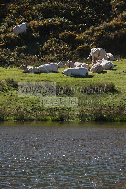 Europe/France/Aquitaine/64/Pyrénées-Atlantiques/Pays-Basque/Iraty: Lac d'Iraty
