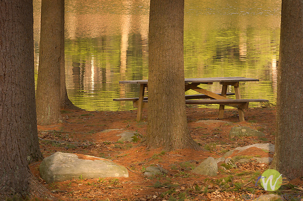 Picnic table and lake