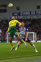 Emiliano Buendia of Norwich City and Dan Burn of Brighton & Hove Albion during Brighton & Hove Albion vs Norwich City, Premier League Football at the American Express Community Stadium on 2nd November 2019