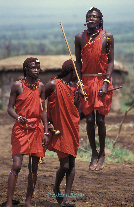 Maasai moran measure each other's capacity to jump, springing from a standing start. <br /> They often sing in a group as they do this, each taking turns to jump. Kajiado, Kenya.