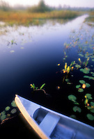 Canoe on the water, Okefenokee Swamp, Georgia, USA