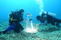 reasearchers photo documenting algae species, French Frigate shoals, Papahanaumokuakea Marine National Monument, Northwestern Hawaiian Islands, Hawaii, USA, Pacific Ocean