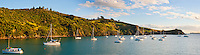 Panoramic Photo of Sailing Boats in Waikeke Island Harbour, Auckland, North Island, New Zealand. Waiheke Island is a stunning island just 40 minutes ferry ride from the Auckland ferry terminal. It is an extremely popular island and holiday destination with both local New Zealanders and foreign tourists alike thanks to its 15 vineyards, beautiful beaches and picturesque scenery and walks. The Fullers Waiheke Island Explorer Tour is a great way to see a large part of the island, and at c.$40 (just over £20) including the ferry, its a great, affordable option.