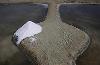 Europe/France/Pays de la Loire/85/Vendée/Ile de Noirmoutier: Fleur de sel dans les marais salants