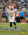 ANDY DALTON, of the Cincinnati Bengals in action during the Bengals game against the Detroit Lion on August 12, 2011 at Ford Field in Detroit, Michigan. The Lions beat the Bengals 34-3.