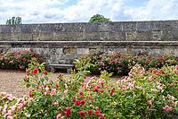 France, Indre-et-Loire, Langeais, château et jardin de langeais, banc et rosiers à fleur d'oeillet (Rosa 'Grootendorst')