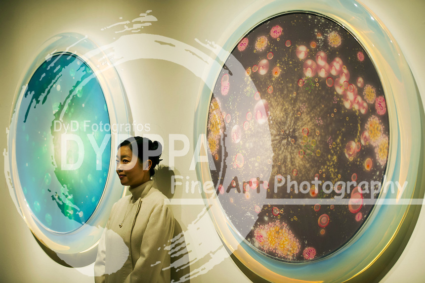 Mariko Mori with her work titled ''Connected World'..Royal Academy of Arts presents Mariko Mori's first major exhibition in London since 1998 titled 'Rebirth', London, Great Britain, December 11, 2012. Photo by  i-Images / DyD Fotografos