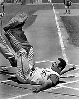 Oakland Athletics third baseman and captain falls at home after completing a sack race with teammates during Farmers Day at the Oakland Alameda County Coliseum. (1970 photo/Ron Riesterer)