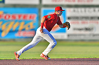 Johnson City Cardinals shortstop Mateo Gil (23) reacts to the ball during game two of the Appalachian League, West Division Playoffs against the Bristol Pirates at TVA Credit Union Ballpark on August 31, 2019 in Johnson City, Tennessee. The Cardinals defeated the Pirates 7-4 to even the series at 1-1. (Tony Farlow/Four Seam Images)