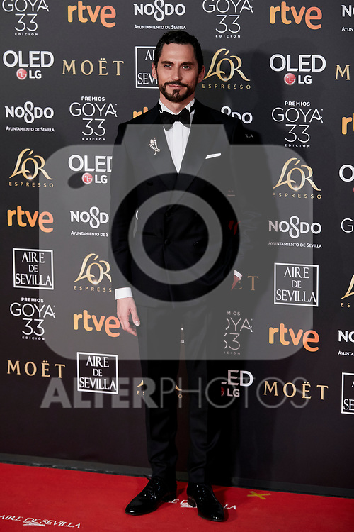 Paco Leon attends to 33rd Goya Awards at Fibes - Conference and Exhibition  in Seville, Spain. February 02, 2019. (ALTERPHOTOS/A. Perez Meca)