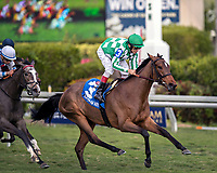 HALLANDALE BEACH, FL - December 30: #3 Dream Awhile wins the $75,000 Tropical Park Oaks Stakes for trainer Chad C. Brown with jockey John Velazquez on board on December  30, 2017 at Gulfstream Park, Hallandale Beach, FL (Photo by Bob Aaron/Eclipse Sportswire/Getty  Images)