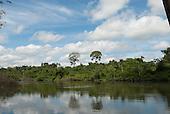 Aldeia Baú, Para State, Brazil. The Curua River with rainforest.