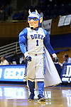 05 November 2015: Duke Blue Devil mascot. The Duke University Blue Devils hosted the Pfeiffer University Falcons at Cameron Indoor Stadium in Durham, North Carolina in a 2015-16 NCAA Women's Basketball Exhibition game. Duke won the game 113-36.