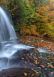 Ricketts Glen State Park, PA: Mohawk Falls on Kitchen Creek in autumn