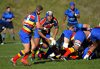 170425 Swindale Shield Club Rugby - Johnsonville v Tawa
