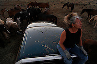 "Dianne Nelson has saved mustangs on a ranch in northern California.  ""It was in 1978 that the Wild Horse Sanctuary founders rounded up almost 300 wild horses for the Forest Service in Modoc County, California. Of those 300, 80 were found to be un-adoptable and were scheduled to be destroyed at a government holding facility near Tule Lake, California. <br /> <br /> The Sanctuary is located near Shingletown, California on 5,000 acres of lush lava rock-strewn mountain meadow and forest land. Black Butte is to the west and towering Mt. Lassen is to the east. <br /> Their goals:<br /> Increase public awareness of the genetic, biological, and social value of America's wild horses through pack trips on the sanctuary, publications, mass media, and public outreach programs.<br /> Continue to develop a working, replicable model for the proper and responsible management of wild horses in their natural habitat.<br /> Demonstrate that wild horses can co-exist on the open range in ecological balance with many diverse species of wildlife, including black bear, bobcat, mountain lion, wild turkeys, badger, and gray fox.<br /> Collaborate with research projects in order to document the intricate and unique social structure, biology, reversible fertility control, and native intelligence of the wild horse."