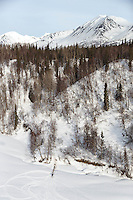 Allen Moore runs up off the Skwentna River on the trail between the Finger Lake and Rainy Pass checkpoint during Iditarod 2016.  Alaska.  March 07, 2016.  <br /> <br /> Photo by Jeff Schultz (C) 2016 ALL RIGHTS RESERVED