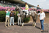 Quick N Proud winning at Delaware Park on 8/16/14