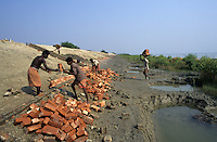 INDIA Westbengal, Sundarbans, construction of dyke for flood protection in Ganga river delta / INDIEN Westbengalen, Deichbau als Hochwasserschutz im Ganges Flussdelta Sunderbans