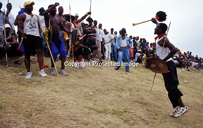 zulu,zulus,men,warriors,traditional,clothing,weapons,spears,IFP,election, 2004.Inkatha Freedom Party supporters rally at a pre-election rally in Lindelani outside Durban, South Africa. .©Per-Anders Pettersson/iAfrika Photos