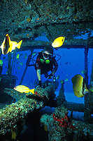 A curious scuba diver(man) explores the YO257, a ship intentionaly sunk about a mile off Waikiki Beach in 100 feet of water. Touring submarines bring their patrons to see this wreck.