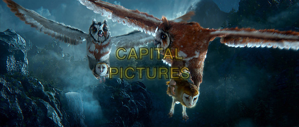 Jutt and Jatt, voiced by ANGUS SAMPSON and LEIGH WHANNELL carry Soren, voiced by JIM STURGESS and Kludd & voiced by RYAN KWANTEN.in Legend of the Guardians: The Owls of Ga'Hoole.*Filmstill - Editorial Use Only*.CAP/FB.Supplied by Capital Pictures.