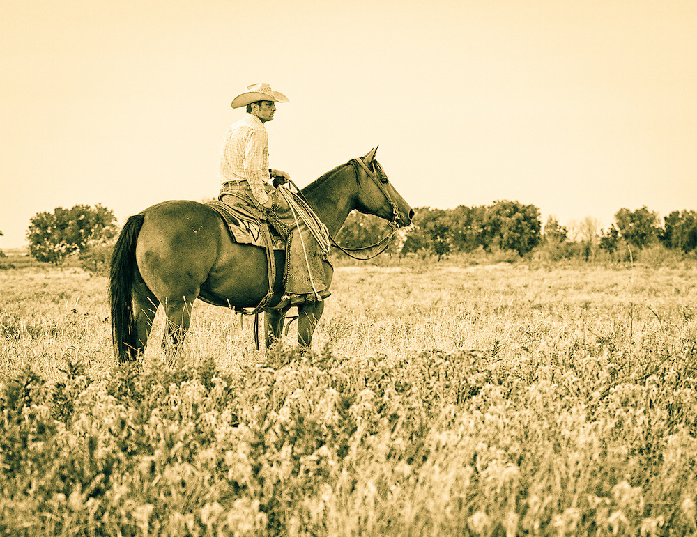 Horses Cowboys Cowgirls Western Lifestyle Images Tammy D
