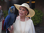 Linda Biggi and blue and yellow Macaw
