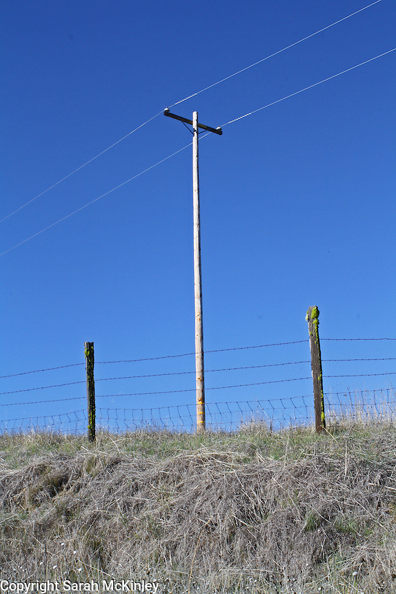 A telephone pole rises above two old, mossy fence posts - all against a bright blue sky - on Orr Springs Road above Ukiah in Mendocino County in Northern California.