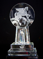 HALLANDALE BEACH, FL - JANUARY 27: The Pegasus Trophy on display on Pegasus World Cup Invitational Day at Gulfstream Park Race Track on January 27, 2018 in Hallandale Beach, Florida. (Photo by Liz Lamont/Eclipse Sportswire/Getty Images)