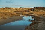SCHIERMONNIKOOG - Waddeneiland Schiermonnikoog.  duinen, duin,  ANP COPYRIGHT KOEN SUYK