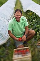 Europe/France/Aquitaine/47/Lot-et-Garonne/Le Mas-d'Agenais: Daniel De Zorzi, agriculteur à Saumathé -Agriculture raisonnée - Vente à la Ferme auto N: A12-3010
