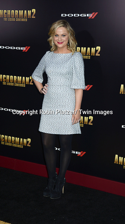 "Amy Poehler attends the U.S. Premiere of Paramount Pictures'   ""Anchorman 2: The Legend Continues""  on  December 15, 2013 at the Beacon Theatre in New York City."