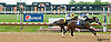 Waytogo Trish winning at Delaware Park on 5/18/13