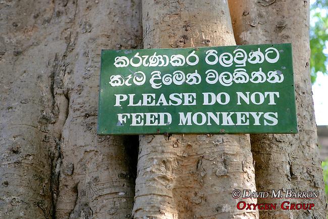 Do Not Feed The Monkeys Sign, Gal Vihara