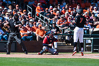 Gonzaga Bulldogs catcher Austin Pinorini (23) catches a called strike three behind Tyler Malone (7) during a game against the Oregon State Beavers on February 16, 2019 at Surprise Stadium in Surprise, Arizona. Oregon State defeated Gonzaga 9-3. (Zachary Lucy/Four Seam Images)