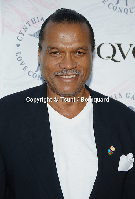 Billy Dee Williams arriving at the QVC and Cynthia Garrett celebrity party at the Roosevelt Hotel  in Los Angeles. August 22, 2006.<br /> <br /> headshot<br /> smile<br /> eye contact