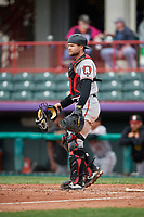 Altoona Curve catcher Arden Pabst (53) during an Eastern League game against the Erie SeaWolves on June 5, 2019 at UPMC Park in Erie, Pennsylvania.  Altoona defeated Erie 6-2.  (Mike Janes/Four Seam Images)