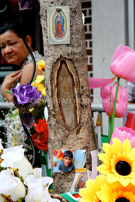 WWW.ACEPIXS.COM . . . . .  ....July 15 2012, West New York....Crowds of local people have flocked to see a tree on Bergenline Avenue in West New York, New Jersey where a naturally occuring scar in the bark of the tree resembles the Virgin of Guadalupe, a venerated Roman Catholic icon of the Virgin Mary. Flowers and photographs of loved ones have been left at the site, and local police have fenced it off and are guarding it on July 15 2012 in West New york New Jersey.....Please byline: NANCY RIVERA- ACEPIXS.COM.... *** ***..Ace Pictures, Inc:  ..Tel: 646 769 0430..e-mail: info@acepixs.com..web: http://www.acepixs.com