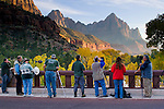 Line of Photographers on bridge at Canyon Junction, below the Watchman, Zion National Park, Utah