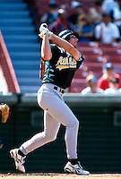 Ben Grieve of the Oakland Athletics during a game at Anaheim Stadium in Anaheim, California during the 1997 season.(Larry Goren/Four Seam Images)
