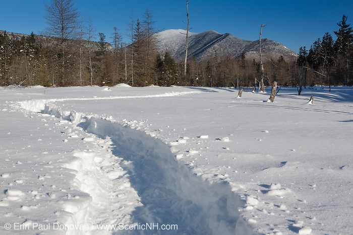 Mount Carrigain from the Meadow Brook drainage along the Sawyer River Trail in Livermore, New Hampshire during the winter months. This area was logged during the Sawyer River Railroad era (1877-1928). Mount Carrigain is a popular day hike.