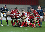 Scarlets scrum half Gareth Davies whips the ball away from the breakdown.<br /> Celtic League<br /> Scarlets v Munster<br /> <br /> 01.03.14<br /> <br /> &copy;Steve Pope-SPORTINGWALES