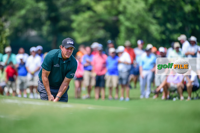 Phil Mickelson (USA) lines up his putt on 4 during Thursday's round 1 of the PGA Championship at the Quail Hollow Club in Charlotte, North Carolina. 8/10/2017.<br /> Picture: Golffile   Ken Murray<br /> <br /> <br /> All photo usage must carry mandatory copyright credit (&copy; Golffile   Ken Murray)