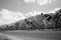 peloton in the valley<br /> <br /> 2014 Giro d'Italia <br /> stage 17: Sarnonico - Vittori Veneto (208km)