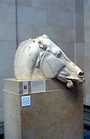 Greek Arts:  Parthenon--part of Elgin Marbles.  British Museum.