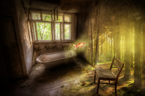 Photo manipulation<br /> Fantasy bathroom