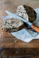 Europe/Provence-Alpes-Côte d'Azur/83/Var/Massif des Maures/Collobrières: Caillette de  Loïc de Saleneuve, agriculteur bio  à la Bastide de Cabrière