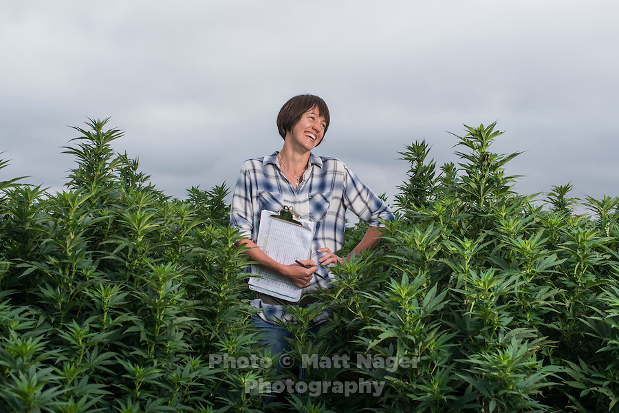 Director of Plant Biology for Charlotte's Web Hemp Bear Reel at the company's farm and greenhouse in Wray, Colorado, Thursday, September 1, 2016. Reel works to breed hemp plants high in cannabidiol (CBD) oil, a compound with antioxidant and anti-convulsant properties, currently sold as a supplement.<br /> <br /> Photo by Matt Nager
